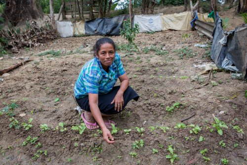 Carmen, with seedlings in her vegetable garden. ASOMUPRO, Nicaragua - CAFOD