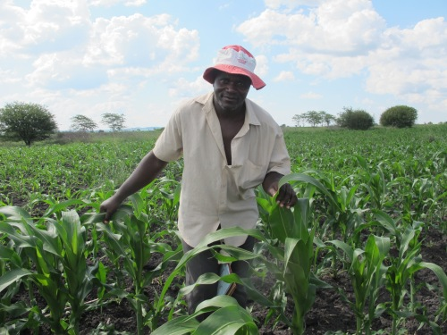 Moyo and other farmers have been helped by CAFOD